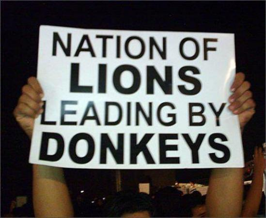 Nation of Lions Leading by Donkys