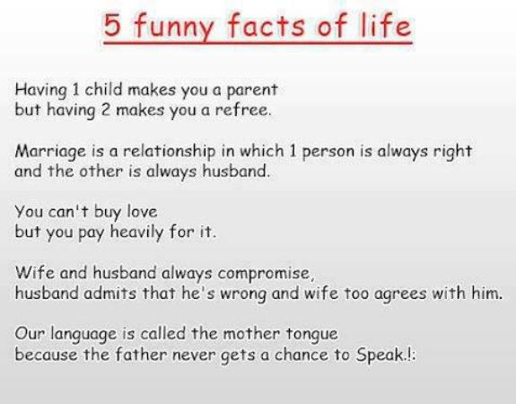 Five funny Facts of