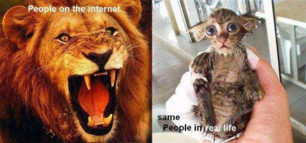 Internet and real Life