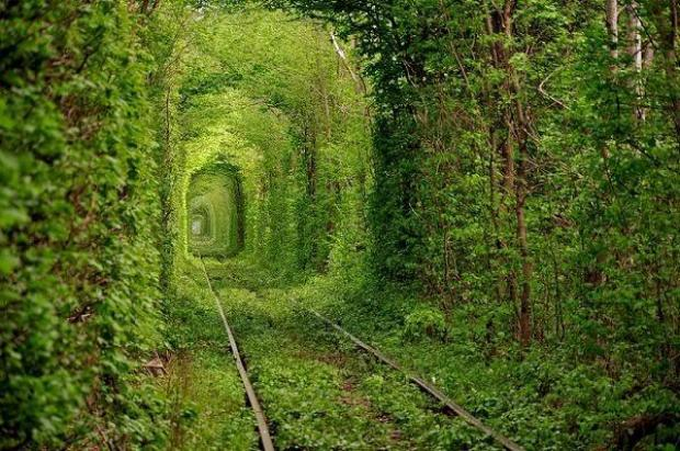 Beautiful Railway Track