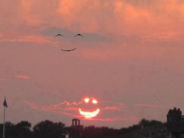 Smile of The Nature