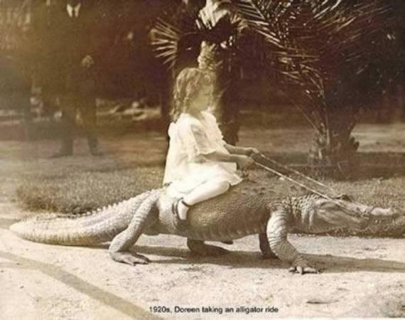 1920's, Doreen taking a pet Alligator ride... Brave Girl