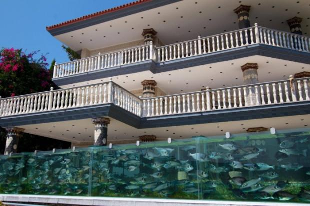 What a House....Fence made out of Fish Tank