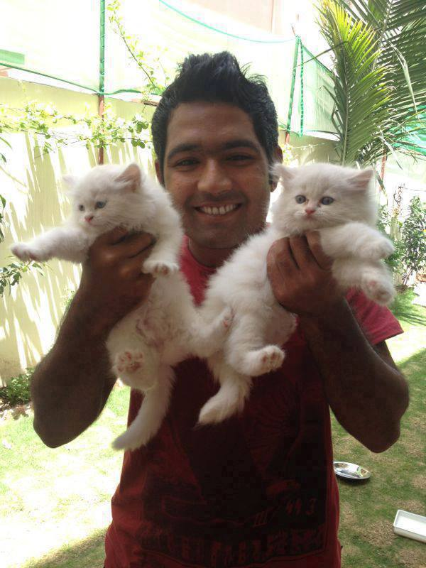 Asad Shafiq With His Cats