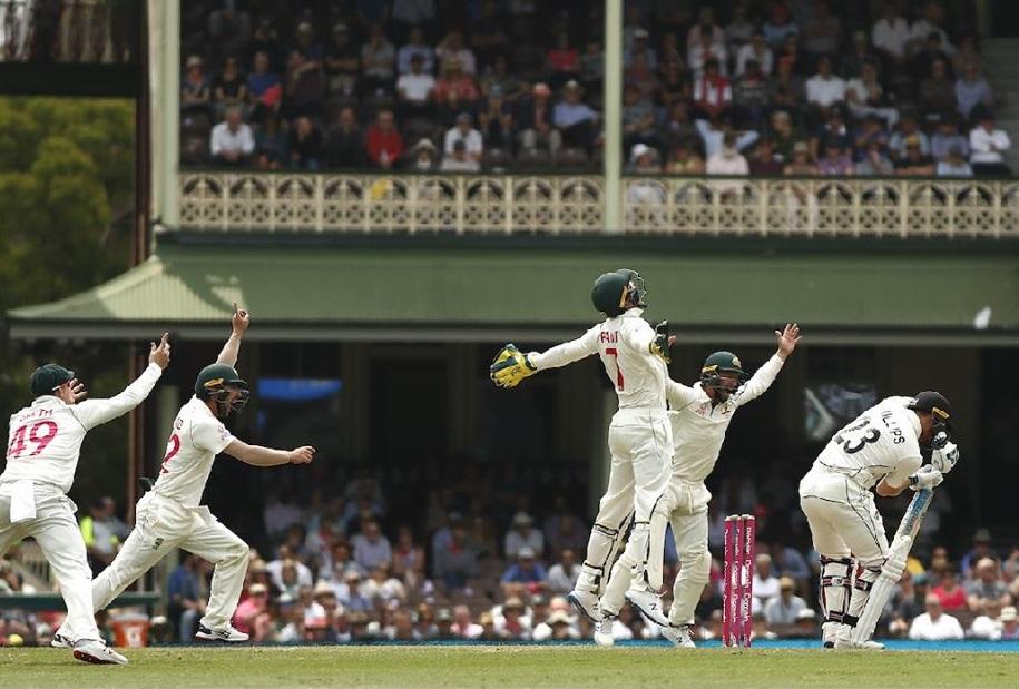 Australia Complete A Whitewash In Sydney Against Newzealand