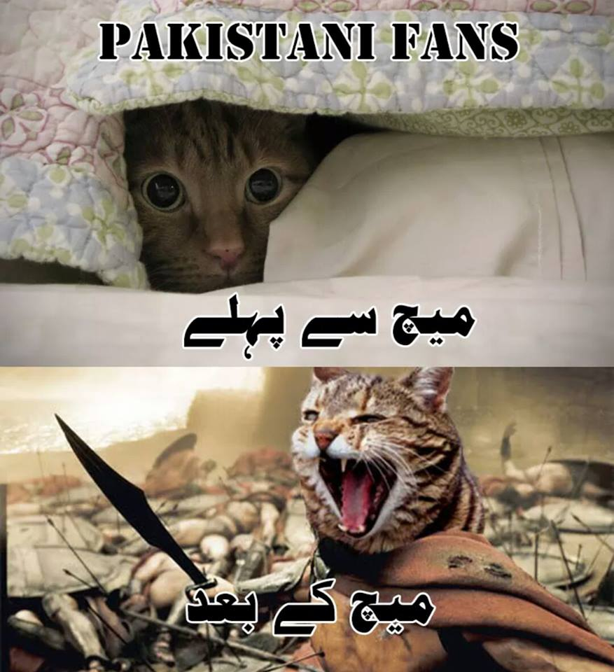 Pakistani Cricket Fan Before And After Match