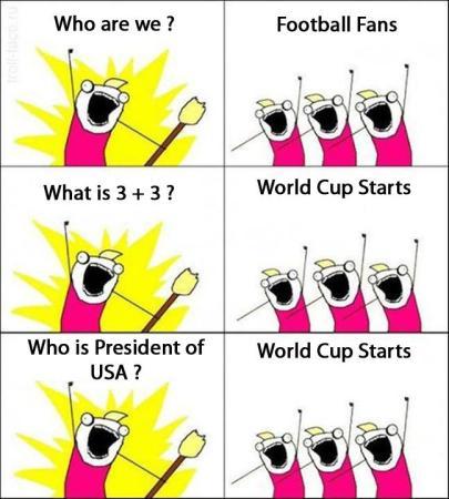 Football World Cup Craze