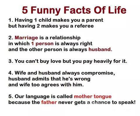 5 Funny Facts Of Life pid7265