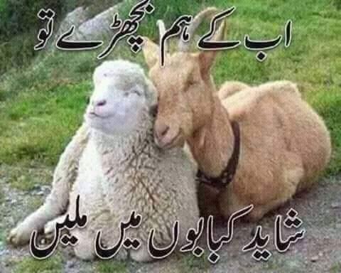 Ab Kai Hum Bichray Tou