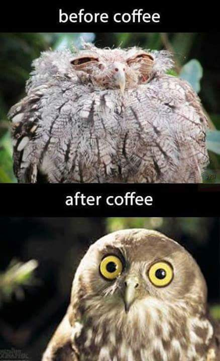 Before Coffee & After Coffee
