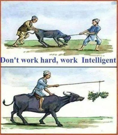 Do Not Work Hard, Work Intelligent