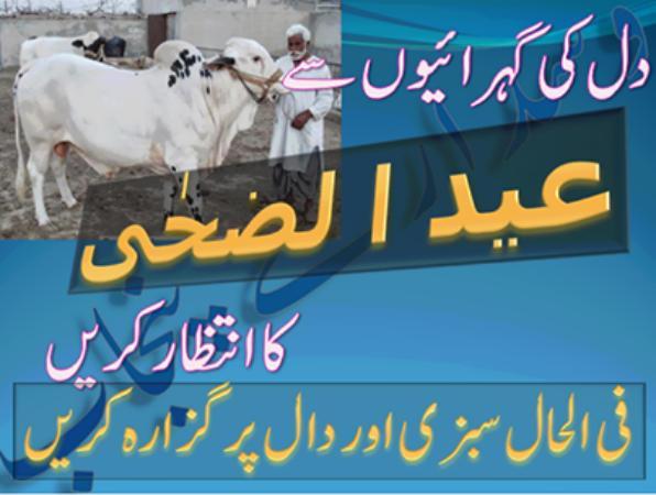 Eid ul Adha Funny