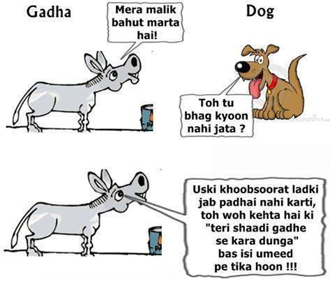 Funny Donkey Joke
