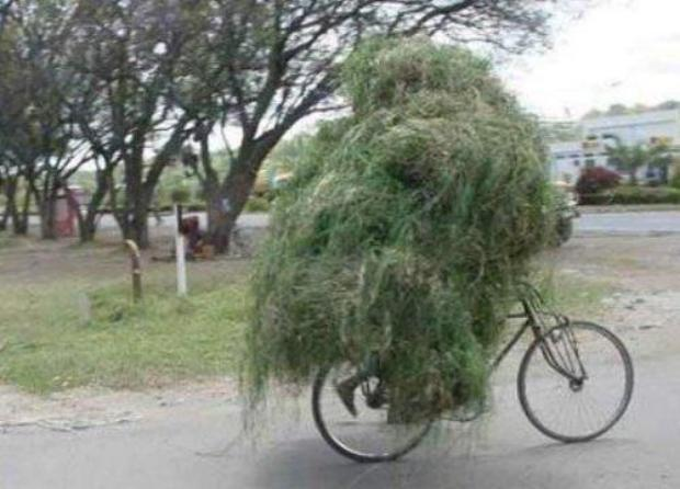 Funny-Pakistani Transport