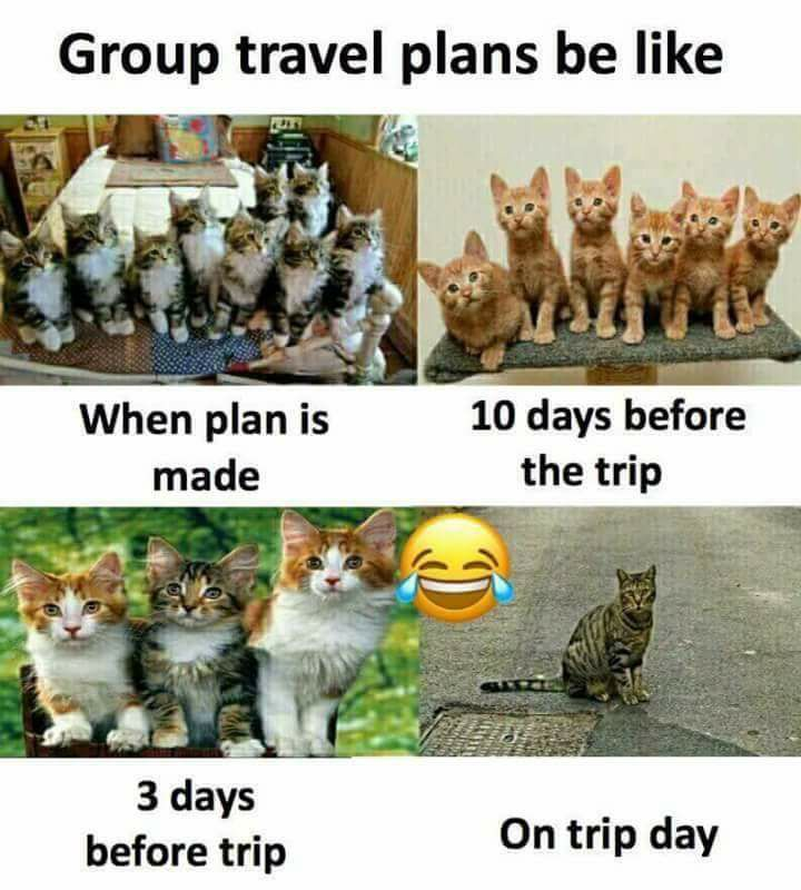 Group Travel Plan Be Like