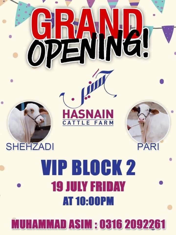 Hasnain Cattle Farm Grand Opening
