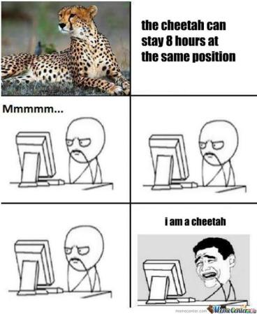 I am Cheeta