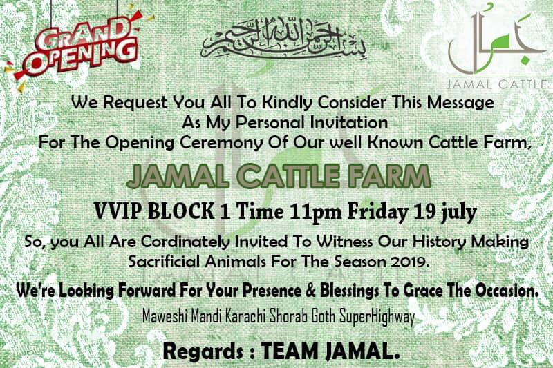 Jamal Cattle Farm 2019