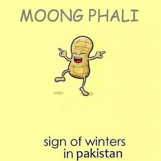 Moongphali - Sign Of Winters In Pakistan