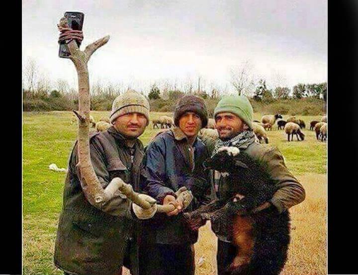New Selfie Style