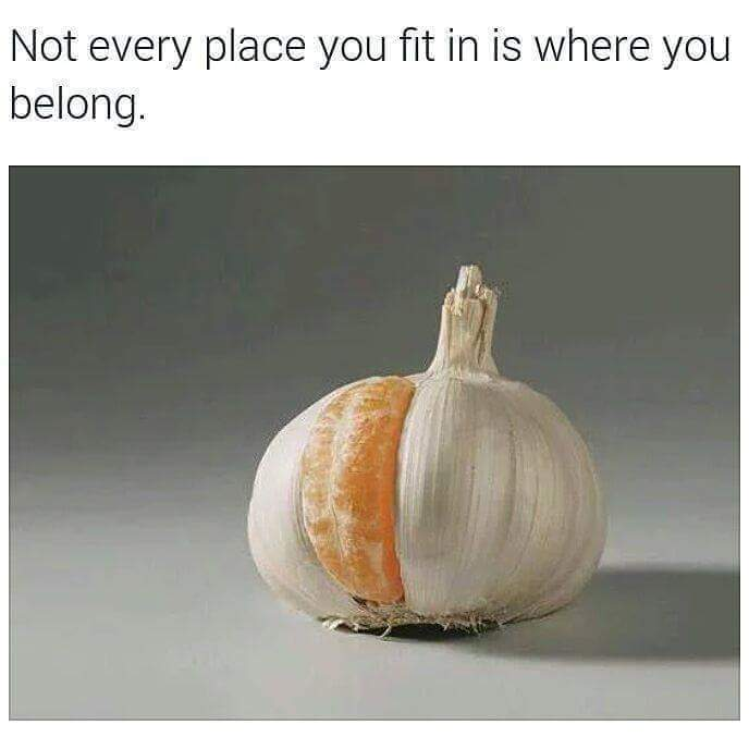 Not every place you fit in is where you belong