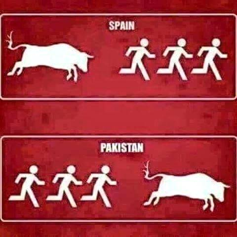 Pakistani Peoples In Bakra Eid Be Like