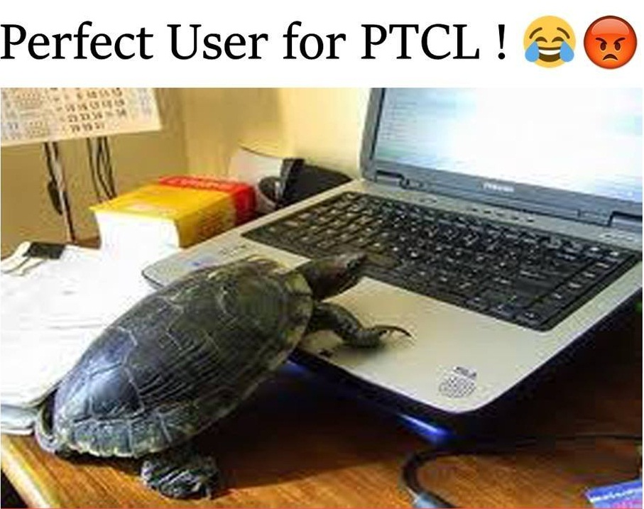 Perfect User For PTCL