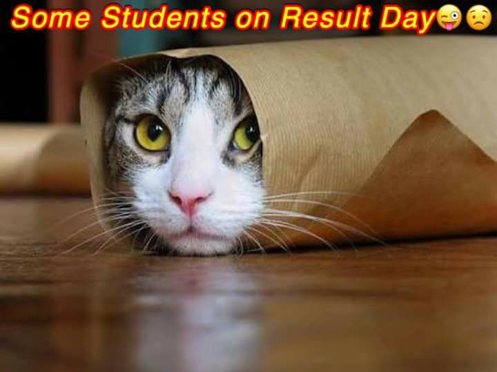 Some Students On Result Day
