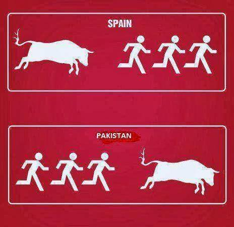 Spain vs Pakistan