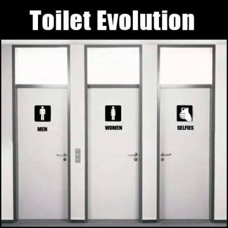 Toilet Evolution