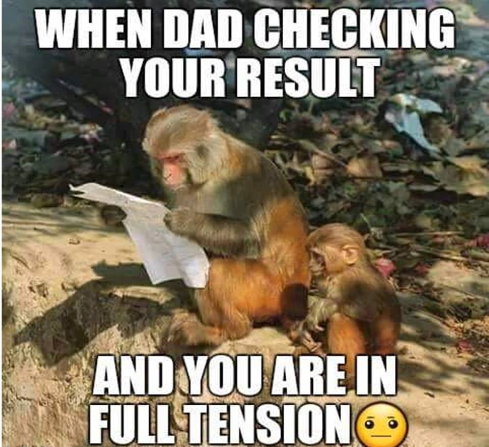 When Dad Checking Your Result