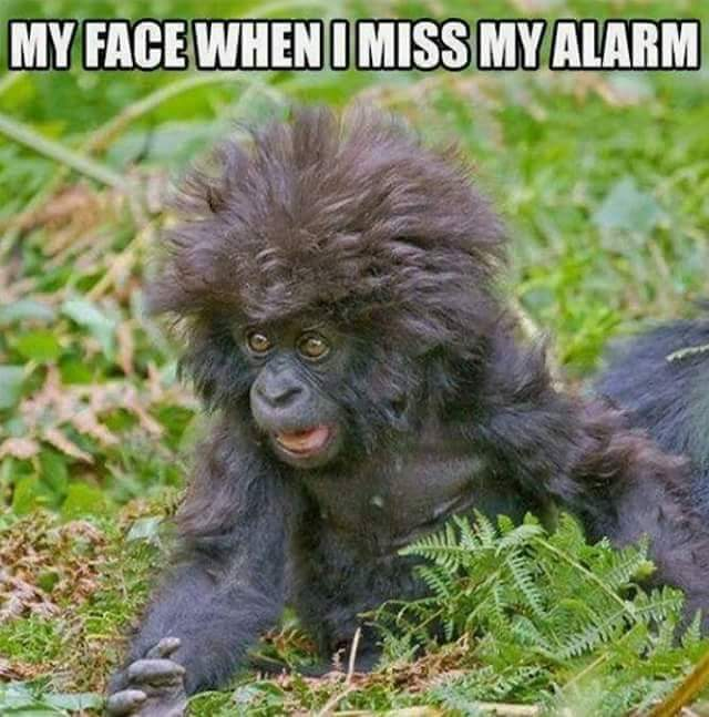 When I Miss My Alarm