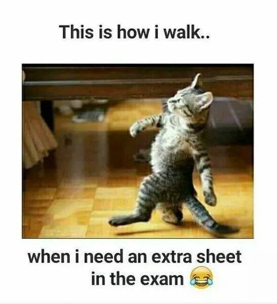When I Need Extra Sheet In Exams