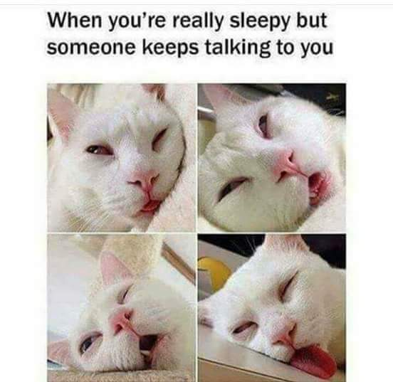 When You Are Really Sleepy