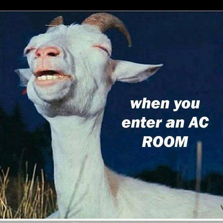 Image result for funny ac pics