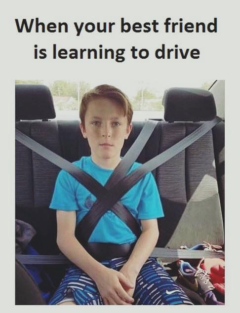 When Your Best Friend Is Learning To Drive