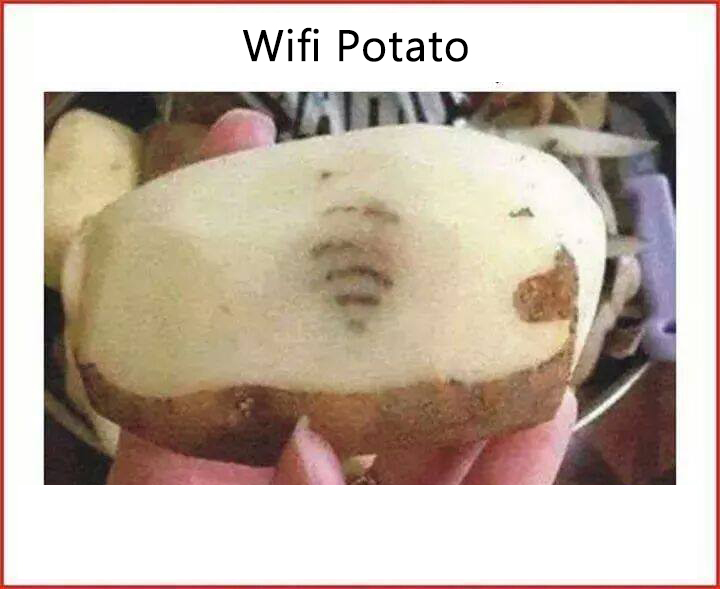 Wifi Potato