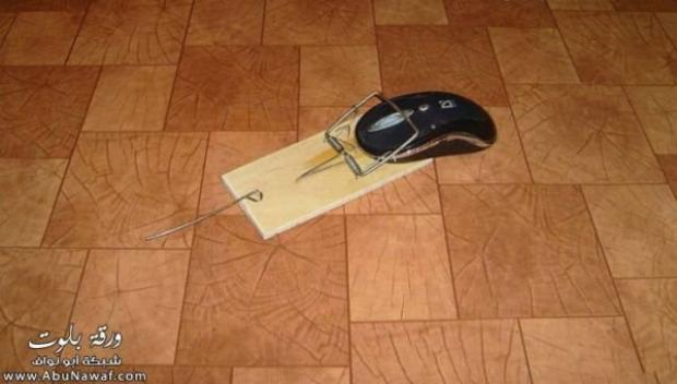 i cought a mouse