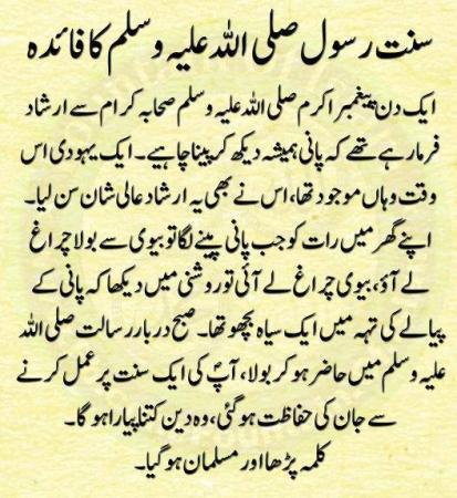 Online essay editor in urdu