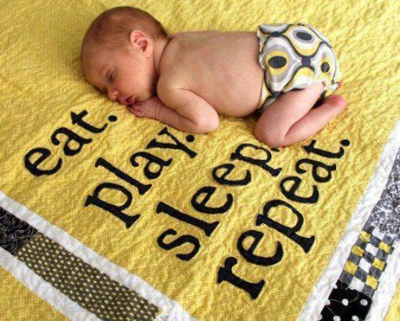 Baby Life Cycle