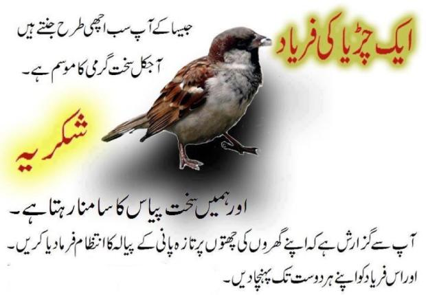 Aik Chidya Ki Faryaad