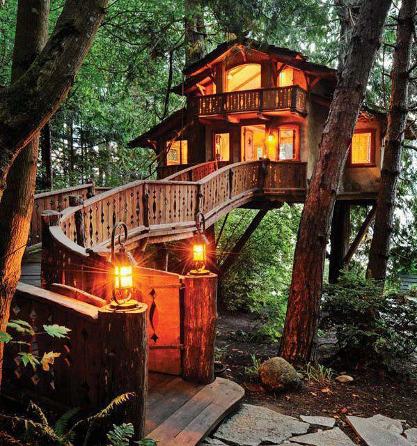 A Beautiful Tree House