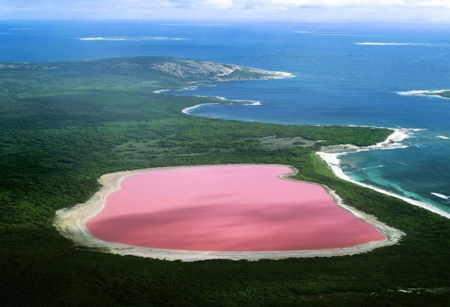 Beautiful Pink Lake Australia