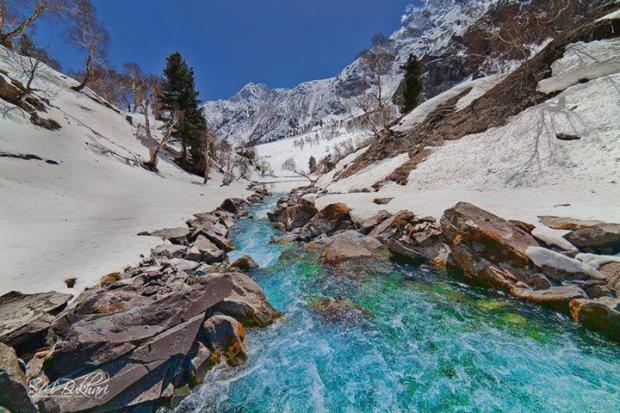 Naltar, GB, Pakistan