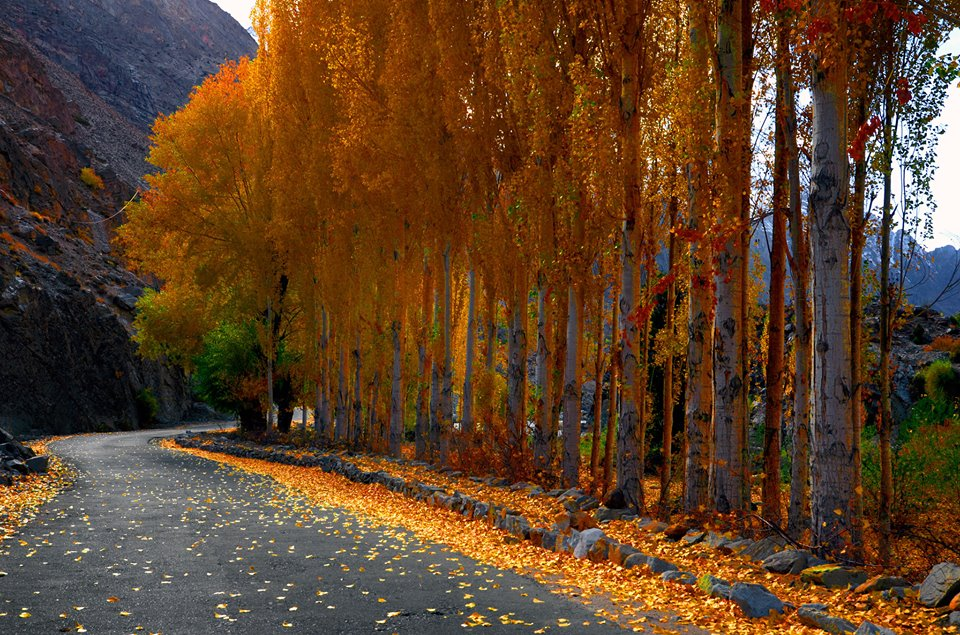 Soasat in Ghizar Valley, Gilgit-Baltistan