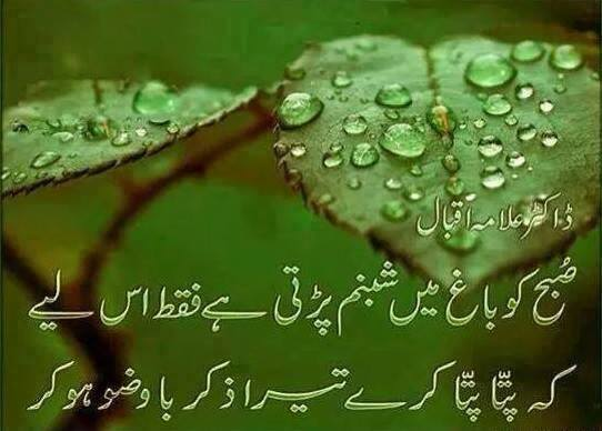 Dew Drops On Leaves - Allama Iqbal Islamic Shayari
