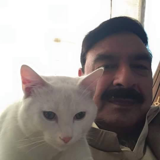 Sheikh Rasheed Selfie With Cat